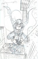 Catwoman 27 Cover Pencil by TerryDodson