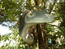 Guanlong by Book-Rat