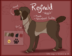 Reggie Reference Sheet by PinkPoodle543