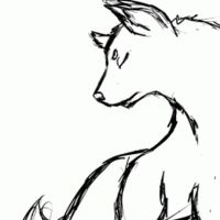 Wolf by Acryeel