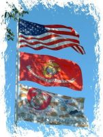 Flags:  USA, USMC, OIF by LeatherneckSquare