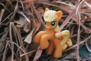 AJ is an Outdoor Pony by JimTheCactus