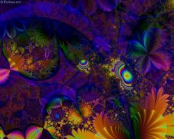 FractalExplorerWP0032 by cristy120377