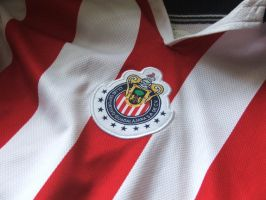 chivas wall by club-chivas