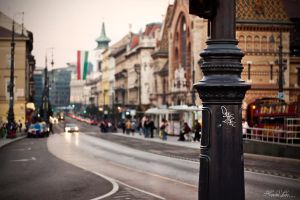 A day in Budapest by the-little-boo