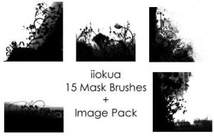 15 Flower Mask Brushes by iiokua