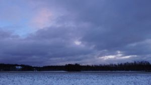 December afternoon by PhotoFrama