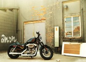 nightster in alley by privationproject