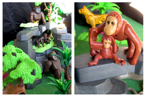 Playmobil Jungle - Great Apes by The-Toy-Chest