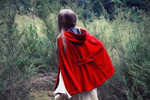 Riding Hood by caitlin-may