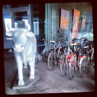 InstaG: The Herd Bull by Helkathon