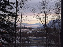 Morning Commute - Wasilla, AK by Line-of-Birds
