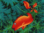 Carps Are Red by 21citrouilles