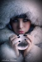 Silver and Cold by AndyGarcia666
