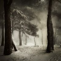 Snow in Porec... by Kaarmen