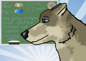 Scotia Profile. by Wolf-Tracks