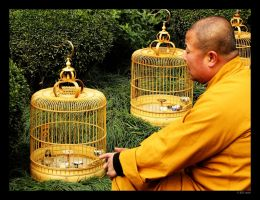 Monk and the Caged Bird by mercyop