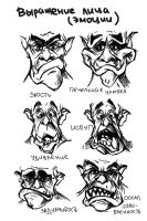 Some emotions of ork by SkmDron