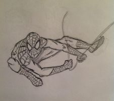 Amazing Spider - Man by Roach321546