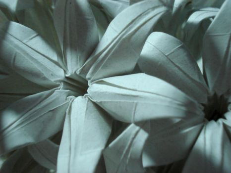 Origami Hyacinths Close-up by HolographicImaging