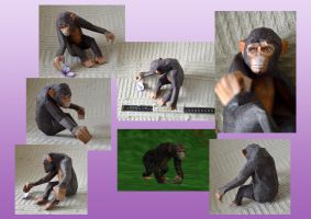 Zoo Tycoon Paper Collection - Chimpanzee by DrWheelieMobile