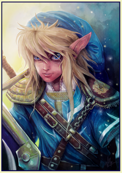 Link - A New Journey by chermilla