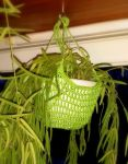 Hanging flower hammock by KnitLizzy