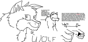 Meme: Wolf and Fox by wolvesrule1243
