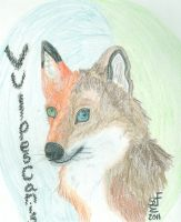 New Deviant ID Vulpes-Canis by Vulpes-Canis