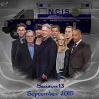 NCIS S13 Wallpaper by silverfox2159