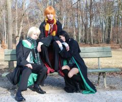 HP Cosplay 3 by seely-san