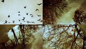 birds and leaves crumble in my hands by PsycheAnamnesis