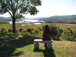 Contemplation along the Hudson Valley by JellyRollDesigns