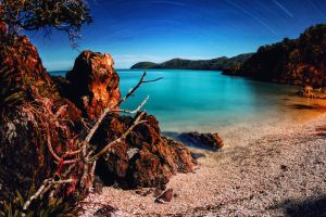 Lovers Cove by Questavia