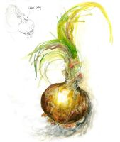 Onion Study V by amwah