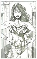 Wonder Woman Six by DrewEdwardJohnson