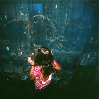 ..Holga 2.. by Cleriee