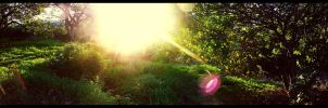 Panoramic by insteadofwords