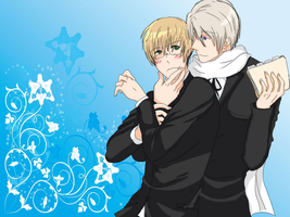 APH-The Swallow and The Bear by SasoXKanklover666