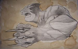 Wolverine by Wagnr