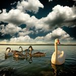 Relaxation by EdSinger