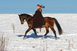 Medieval Winter Noble Horse Trotting I by LuDa-Stock