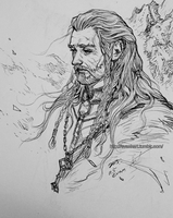 Old king Thorin (2) by evankart