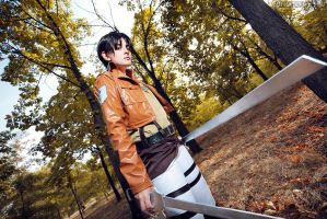 Attack on Titan by Lulu-kitsune-20