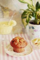 Banana Nut Muffin by TheCameraGirl