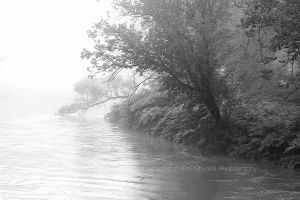 River of Fog 2 by timseydell
