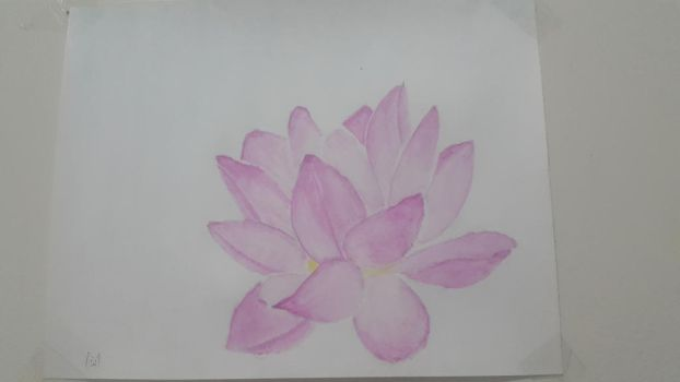 Lotus flower by CasualScribbles