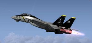 F-14 Final Tomcat Cruise 2 by agnott