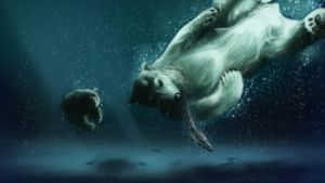 Polar Bears - Without Frame by iamherecozidraw