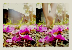 walk with me.. by thresca